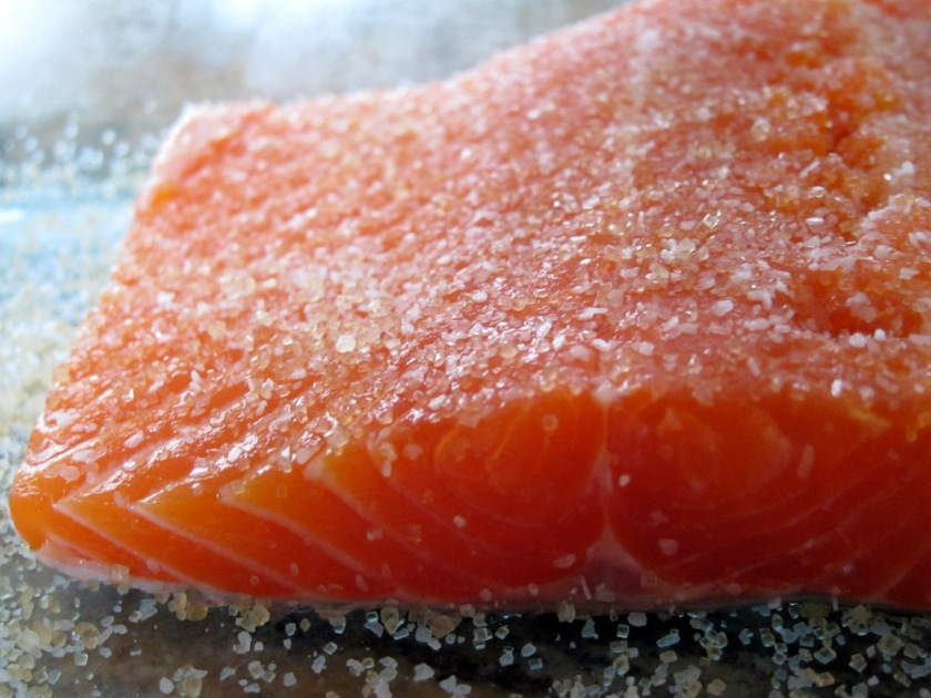 Salmon Curing