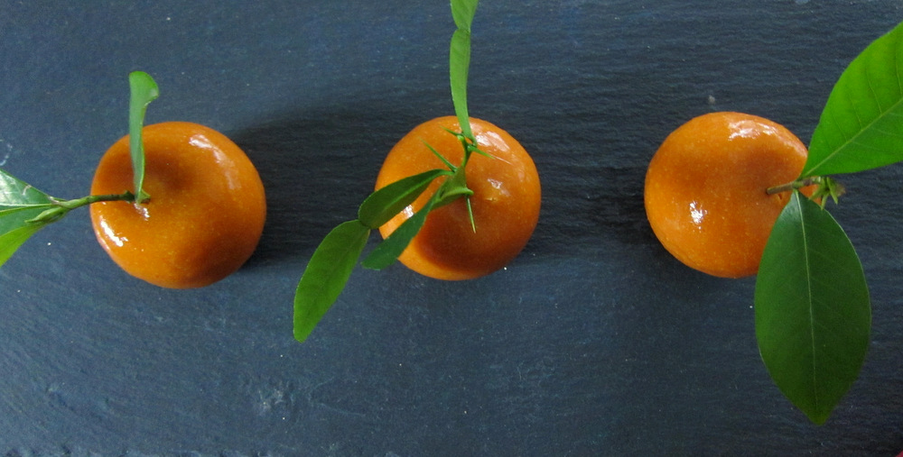Madarin-Meat Fruit10