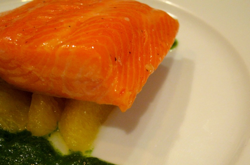 Salmon-Citrus Cure-Coulis3